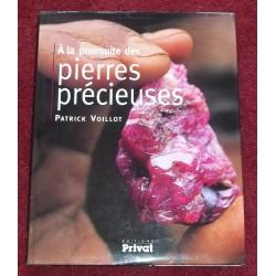 A la poursuite des Pierres Précieuses