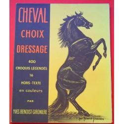 Cheval - Choix - Dressage